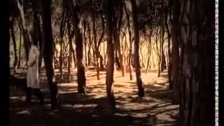 ʬ Alien Encounter : Evidence of the Mass UFO Alien contact Friendship Case (Full Documentary) YouTub