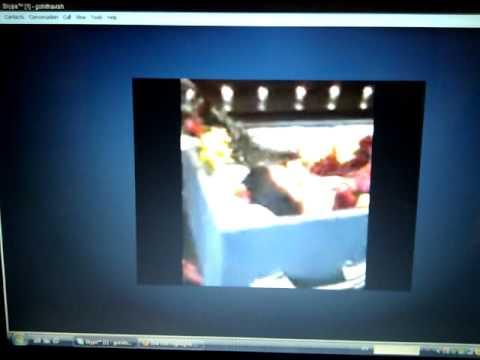 Xxx Mp4 Usha Aunty Rituals 3gp Sex