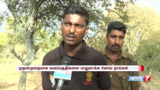 Trained dogs employed for security in TN forest areas | News7 Tamil