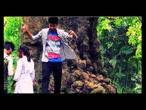 ROMANA PARK Is BEAUTIFUL । bangladesh dhaka | Romance in Park । রমনা পার্ক | romana park|park video