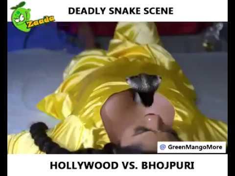 Xxx Mp4 Bhojpuri Actress Snake Kissing Video Viral Social Media 3gp Sex