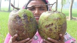 Delicious Coconut Vorta Recipe In my Village FARM FRESH Cooking Coconut Paste Recipe Village Food