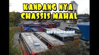 INI DIA !! ISI Terminal Bis Paling Mahal DI Indonesia Deretan Bis Premium, Scania, Mercedes-Benz