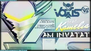 Voxis feat. Kamelia - Am invatat (Lyric Video)
