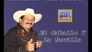 Armando Martinez - El Caballo Y La Novilla