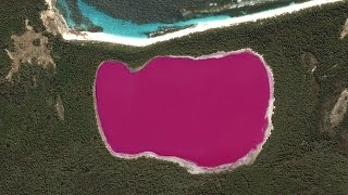 Look At This Bright Pink Lake!