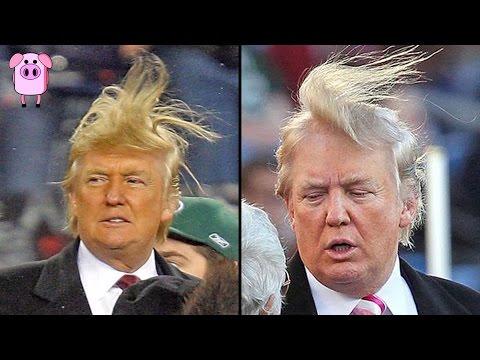 10 Shocking Donald Trump Facts You