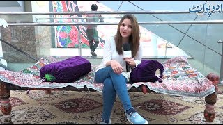 Funny Common Sense Video - Insan Ke Baad Sab Sey Zaheen Makhlooq Kaunsi Hai?