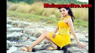 Aaj Mumbai - Malayalam movie Business Man [Team Mallu ]