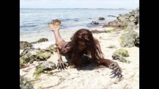 Real Mermaid Found   Proof of Mermaids Existence