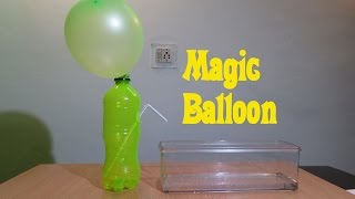 Balloon Magic (Physics Experiment) - Easy Tutorials