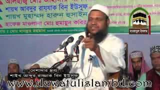 আমি মুসলিম মূর্তি ভাংতে এসেছি মূর্তি কে সম্মান করতে নয়,আমি কাপুরুষ নই Sheikh Abdur Razzaque Bin Yous