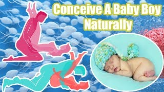 Conceive A Baby Boy Naturally   3 Easy Ways To conceive a baby boy