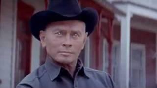 Vintage - Westworld Movie Trailer