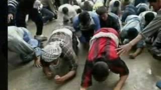 عاشوراء ومسيرة الكلاب عند الشيعة الرافضة