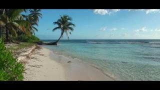 Beautiful  Vocal Trance Music - January 2017 (Music Video)