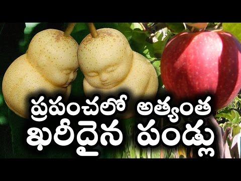 ప్రపంచలో అత్యంత ఖరీదైన పండ్లు World s Top 10 Most Expensive Fruits T Talks