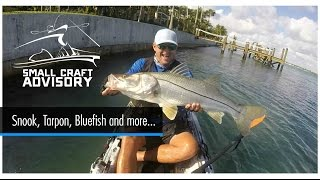 SCA: Tarpon, Big Snook, Giant Bluefish and more...