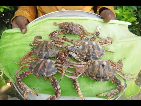 CRAB GRAVY Cooking In My Village Prepared By Mummy   VILLAGE FOOD