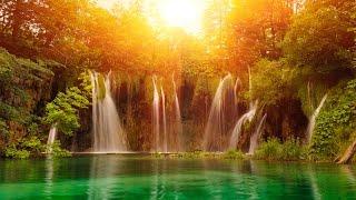 Zen Music, Relaxing Music, Calming Music, Stress Relief Music, Peaceful Music, Relax, ☯3133