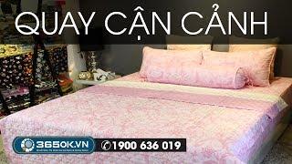 Ga giường đẹp màu hồng nhạt Hàn Quốc chất lượng tốt giá ưu đãi kí hiệu KS1C-088