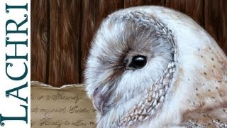 Speed Painting - Barn Owl oil and acrylic paint - Time Lapse demo by Lachri