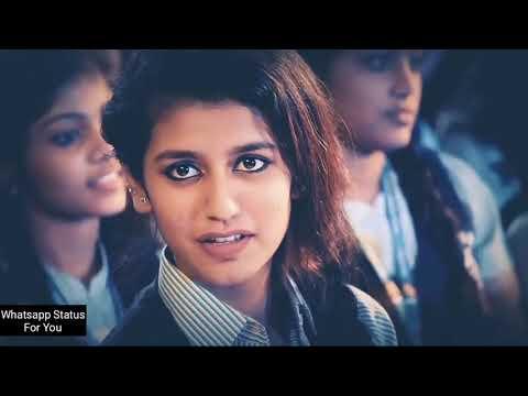 Xxx Mp4 Priya Prakash Varrier Sexy Adda 3gp Sex