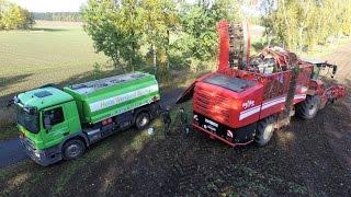 Neuer Rübenroder GRIMME Rexor 620 - Rübenernte - Rüben roden-Feldbetankung -Sugar beet harvester