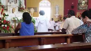Sacred Heart of Jesus with Fr. Assing June 5th 2016
