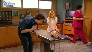 I Didn't Do It | The Checkup | Official Disney Channel UK