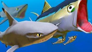 New Black-Tip Shark vs New Tuna! - Feed and Grow Fish - Part 66 | Pungence