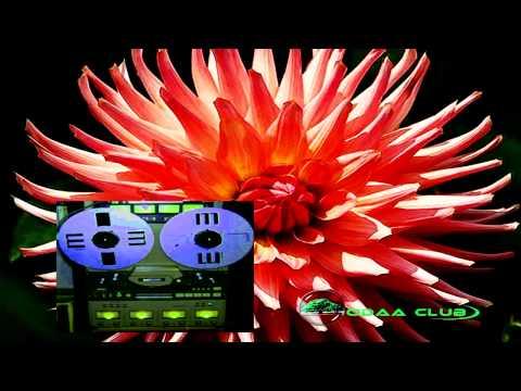 Xxx Mp4 Oromo Music Mohammed Tawil Aadiyee Khiyya Garaan Booye 1 Audio Only 3gp Sex