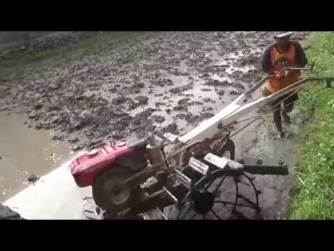 Cara membajak sawah dgn traktor  di Yogyakarta, Indonesia, sebelum ditanami padi