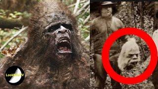 5 Best Bigfoot Sightings Caught On Camera!