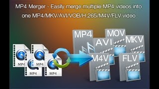 Merge mp4 files with Pavtube Video Converter