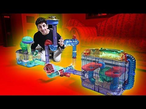 BUILDING MY HAMSTER HIS DREAM CAGE INSANE FaZe Rug
