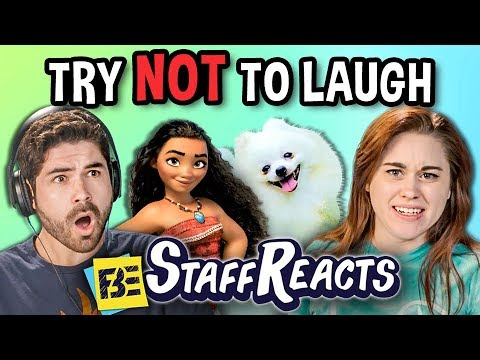 Try to Watch This Without Laughing or Grinning #13 (ft. FBE STAFF)