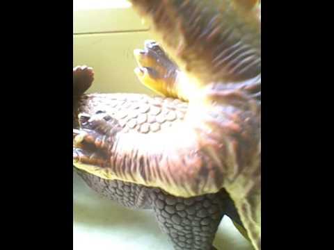 Xxx Mp4 Dino Sex Bones Video 3gp Sex