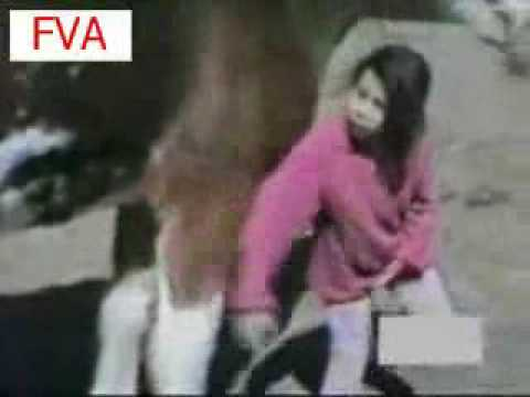 Girl owned by horse
