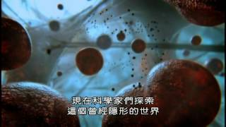 (BBC)細胞內部的秘密宇宙 Secret Universe Journey Inside the Cell