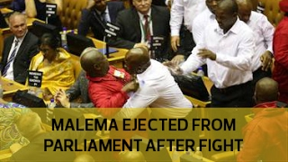 Julius Malema party in fist fight in Parliament