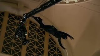 Michelle Ryan drops in at Cardiff's National Museum - Doctor Who Confidential - BBC