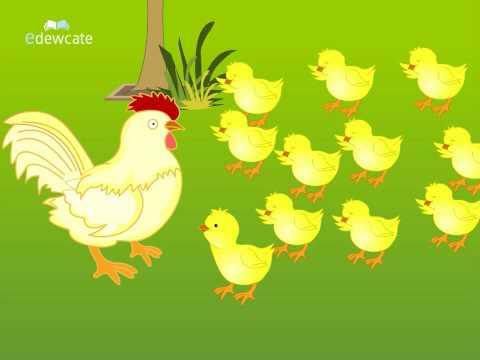 Telugu Cartoon Story   Bangaru Kodi Pilla   A Wise Little Hen