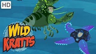 Wild Kratts - When Animals Defend Themselves: Survival of the Fittest