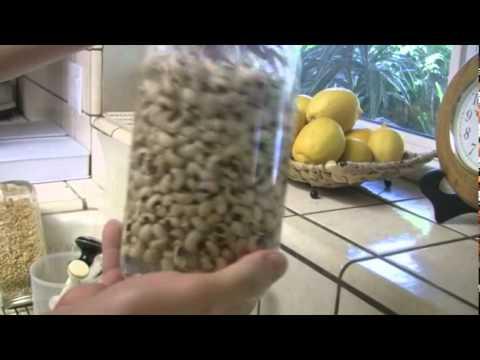 Como hacer germinados LA VERDAD ETERNA
