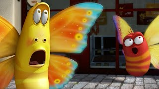 LARVA - THE BUTTERFLY | 2017 Cartoon | Cartoons For Children | Kids TV Shows Full Episodes