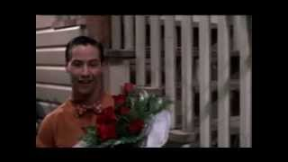 Keanu - In Flowers