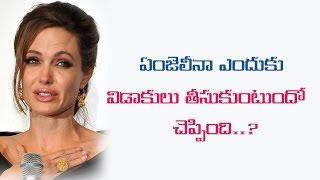 Angelina Jolie Endhuku Divorce Tisukuntundho Cheppindhi...? || Filmystarss