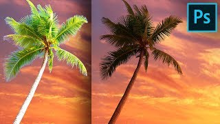 Cut Out Trees Without Halos or Fringes in Photoshop!