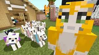 Minecraft Xbox - Dog Day [571]